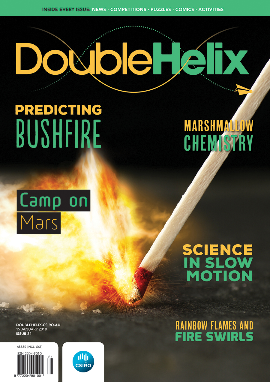 Double Helix magazine cover with match stick being struck