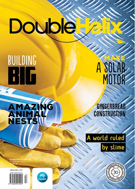 Double Helix magazine Issue 13 cover with hard hat